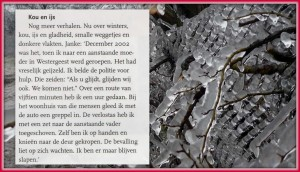 archief Aldert de Vries21